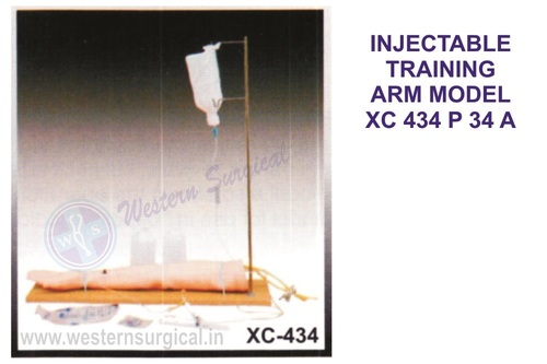 Injectable Training Arm Model