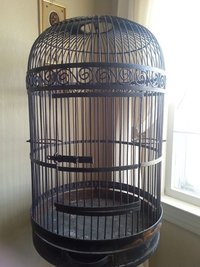 Wrought Iron Bird Cage- Metal