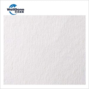 PP Spunlace Non Woven Fabric for Baby Wet Wipe - Wet Tissue