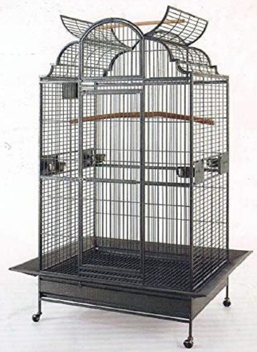 New Large Play Dome Top Wrought Iron Bird Cage