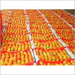 Pure Organic Tomato