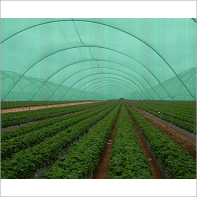 Agriculture Plastic Net
