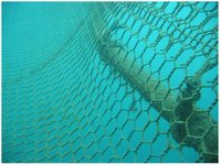 Aquaculture and net-tying part