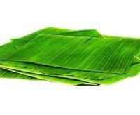 Banana Leaf (Thalavaazhai)