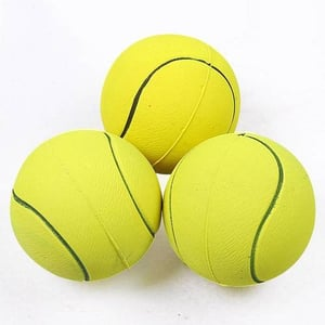 PROFESSIONAL DESIGN NEW PET TOY ROPE TENNIS FOR DOGS PET PRODUCT