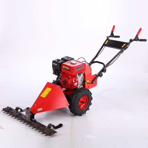 Small Grass Mower