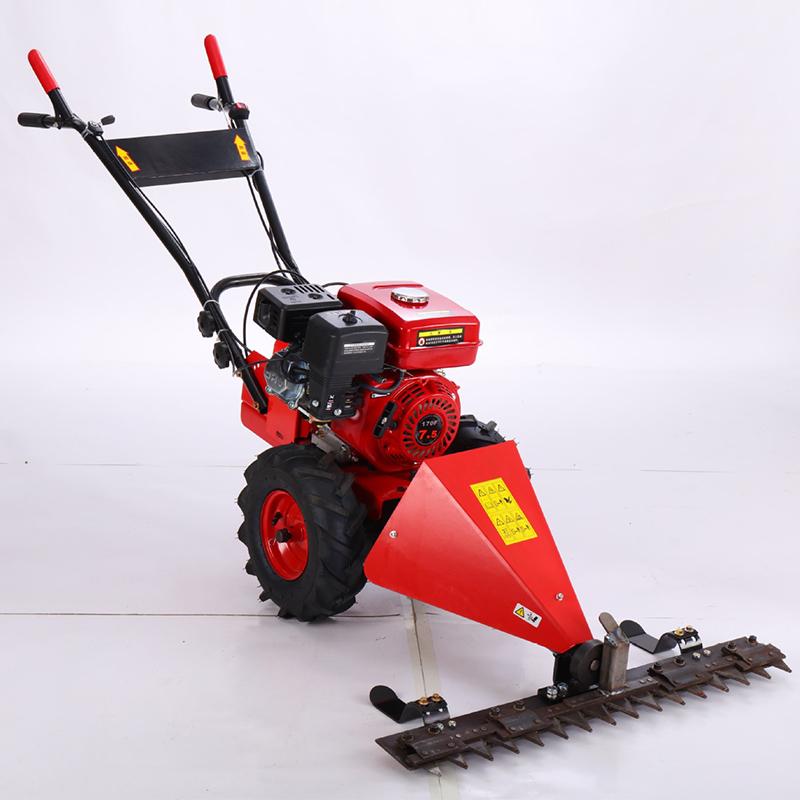 Small Grass Mower