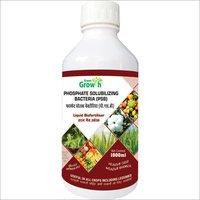 Phosphate Solubilizing Bacteria (PSB) Liquid Biofertilizer