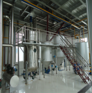 Soya Bean Cake Based Solvent Extraction Plant