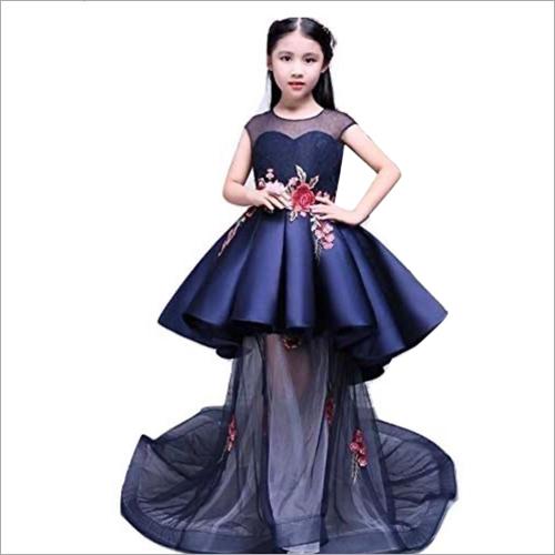 Net Embroidery Party Wear Dress