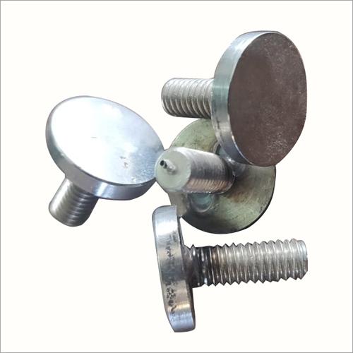 Stainless Steel Round Mirror Cap screw