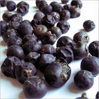 Juniper Berry Select Oil