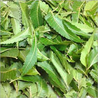 Neem Leaf Total Extract