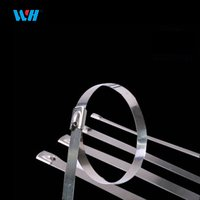 STAINLESS STEEL LOCK STEEL BALL TIES