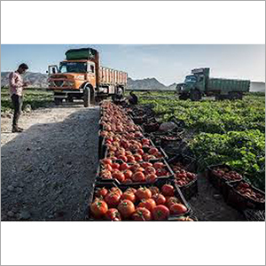 Indore To Bangalore Fruit And Vegetable Express Services