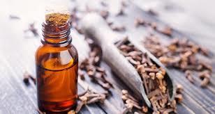 Clove Bud & Leaf Oil