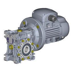 Warm Geared Motor
