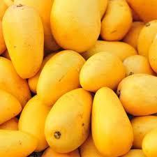 Mango Oil