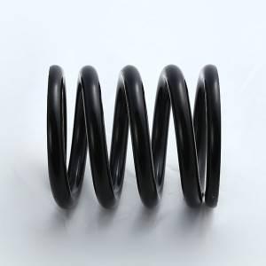 customized 302 350 454 lbs valve springs