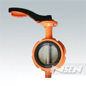Removable Resilient Butterfly Valve