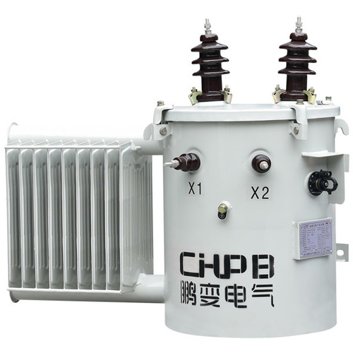 Single Phase Column Type On Oil-Immersed Power Transformer