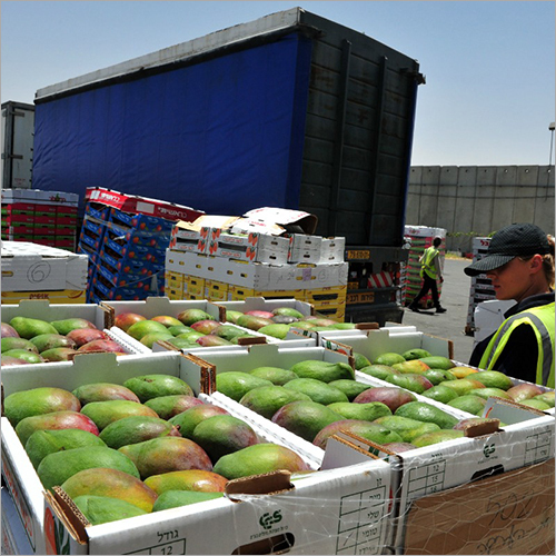 International Food Shipment Services