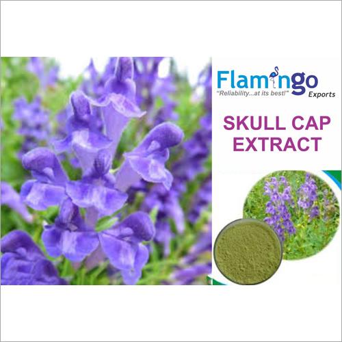 Skullcap Extract