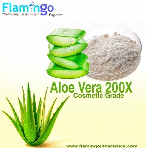 Aloe Vera 200 X Powder