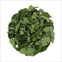Dry moringa leaves