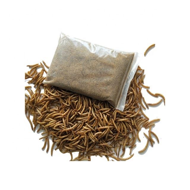 DRIED MEALWORM ANIMAL FEED ADDITIVE