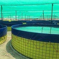 Biofloc Tank For Fish Farminga