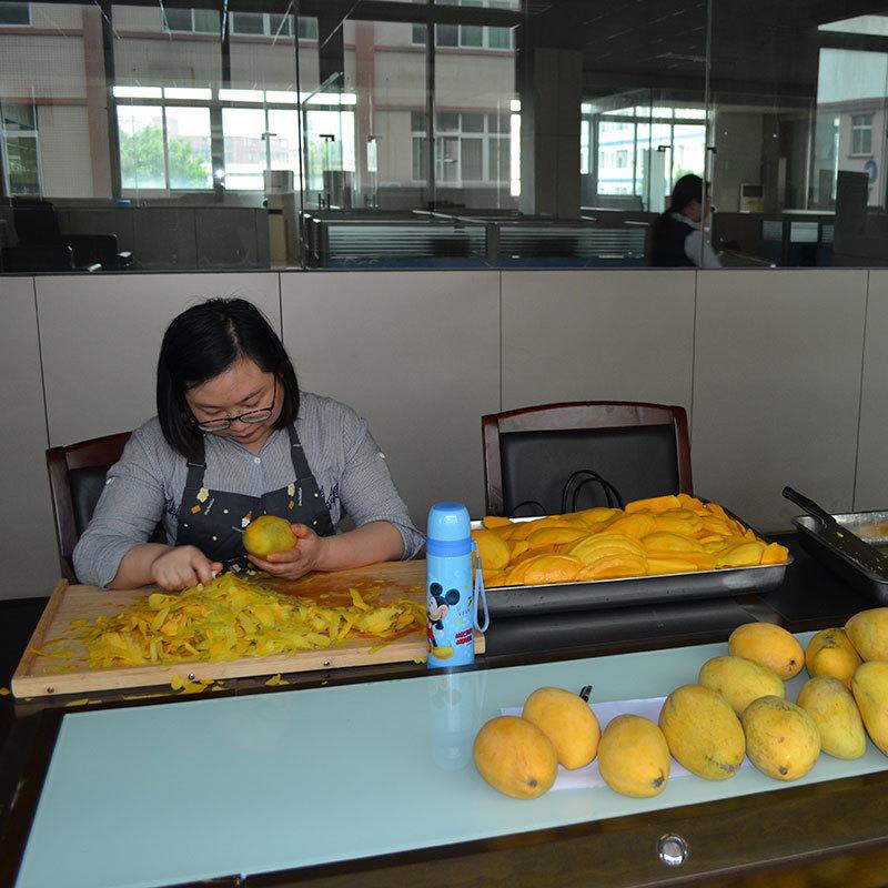 Fruits dry and dehumidify mango dehydrator