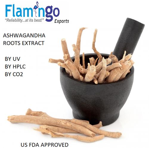 Ashwagandha Extract ( Withania Somnifera )