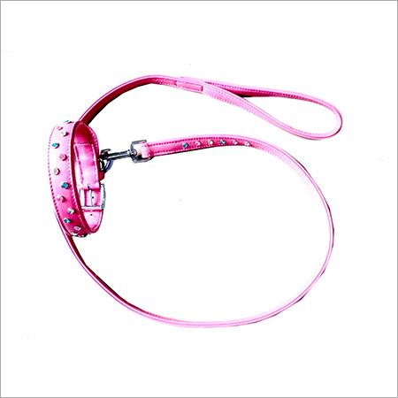 Collar & leash set-2713