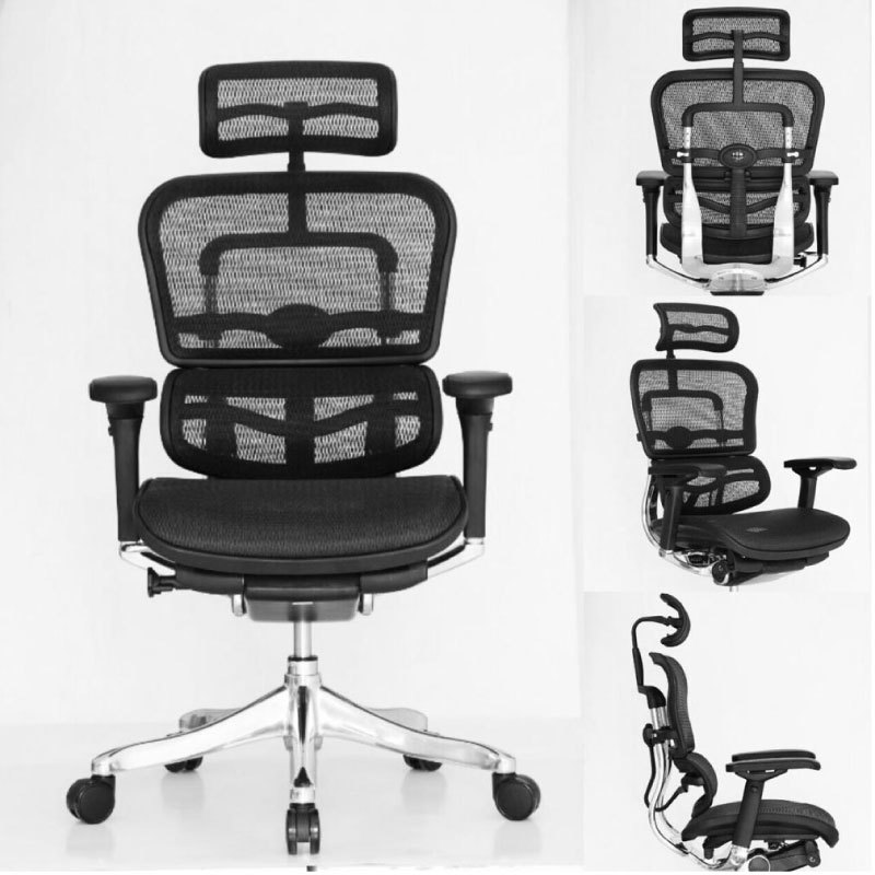 Ergohuman Chair with Headrest