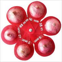 Red Organic Onion