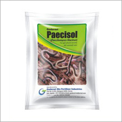 Paecilomyces Lilacinus Pesticide
