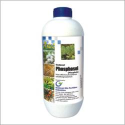Phosphate Stabilizing Bacteria