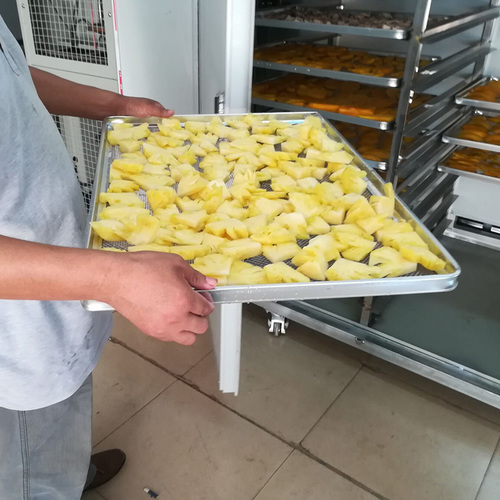 Commercial pineapple dehydrator with trays
