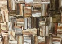 Petrified Wood Retro