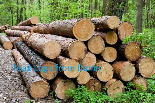 Teak Wood & Logs