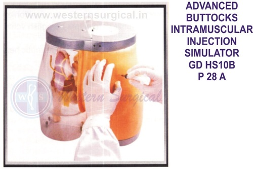 ADVANCED BUTTOCKS INTRAMUSCULAR INJECTION SIMULATOR GD HS10B