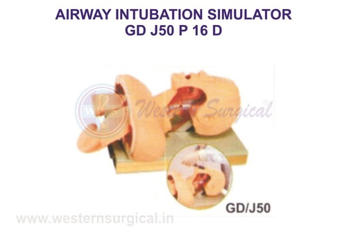 AIRWAY INTUBATION SIMULATOR GD J50