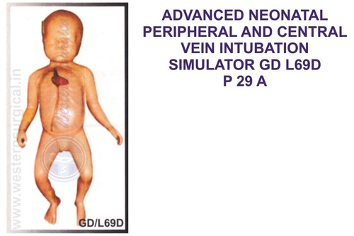 ADVANCED NEONATAL PERIPHERAL AND CENTRAL VEIN INTUBATION SIMULATOR GD L69D