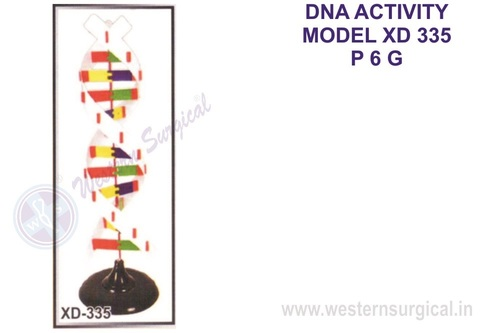 DNA ACTIVITY MODEL XD 335