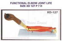 FUNCTIONAL ELBOW JOINT LIFE SIZE XD 127