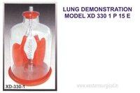 LUNG DEMONSTRATION MODEL