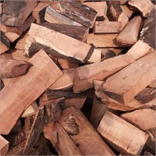 Babool Firewood