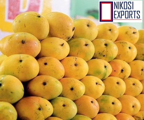 Fresh Totapuri mangoes