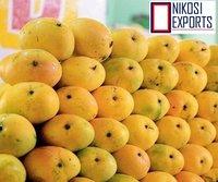 Fresh Totapuri mangoes